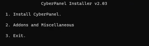 Select 1: Install CyberPanel.